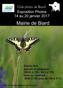 affiche-2017-b-1280-x-1024